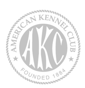 Akc logo download free clipart with a transparent background.