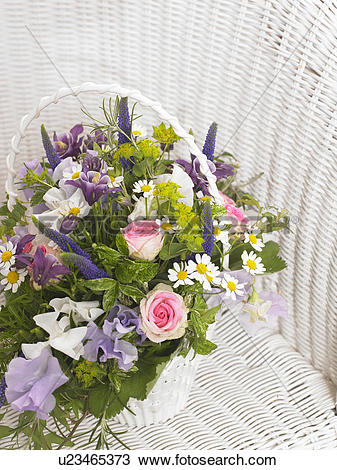 Stock Photo of Roses, sweet pea, veronica, camomile and, akelei in.