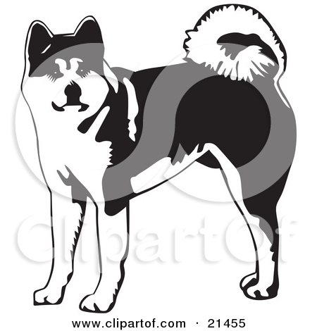 Clipart of a Happy Brown Akita Dog.