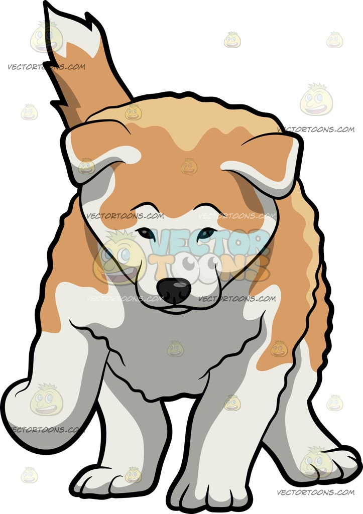 The best free Akita clipart images. Download from 30 free.