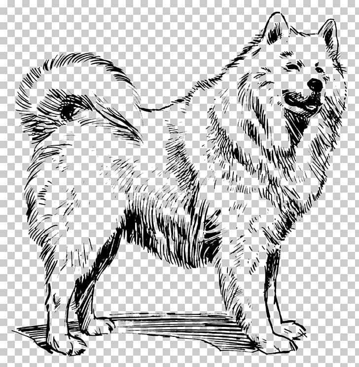 Samoyed dog Alaskan Malamute Akita Dog breed , dogs PNG.