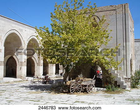 Stock Photo of Tree in courtyard of caravanserai, Aksaray.