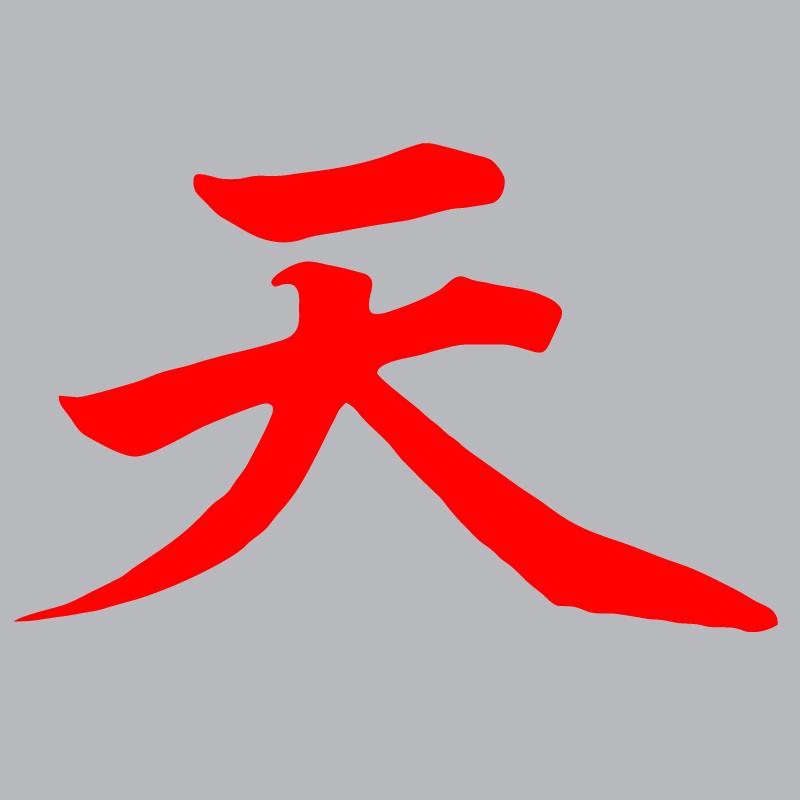Akuma Street Fighter Gouki Devil Logo Graphic T Shirt.