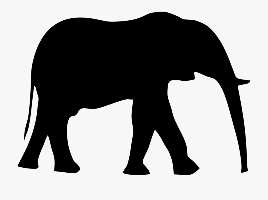 Acalephans Clipart Two Elephant.