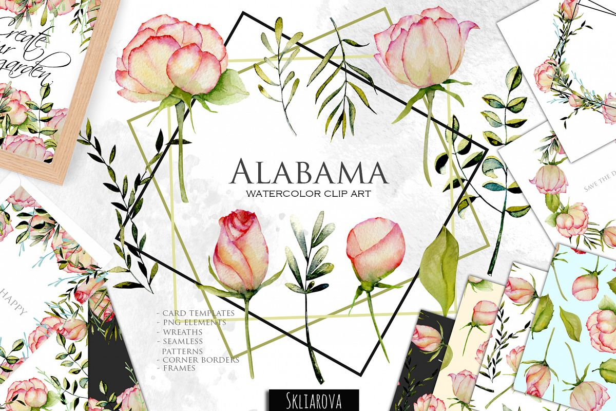 Alabama roses. Watercolor collection..