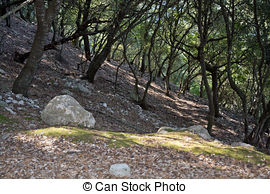 Mountain hiking Images and Stock Photos. 149,881 Mountain hiking.
