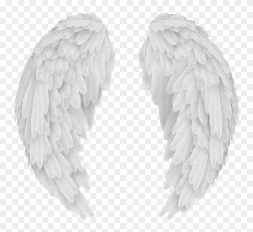 wings #wing #alas #ala #overlay #tumblr #white #blanco, HD Png.