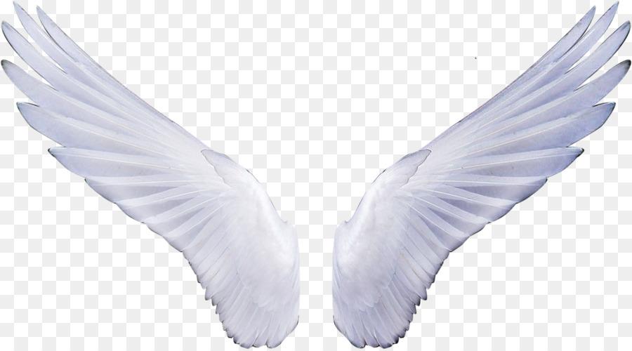 Angel Cartoontransparent png image & clipart free download.