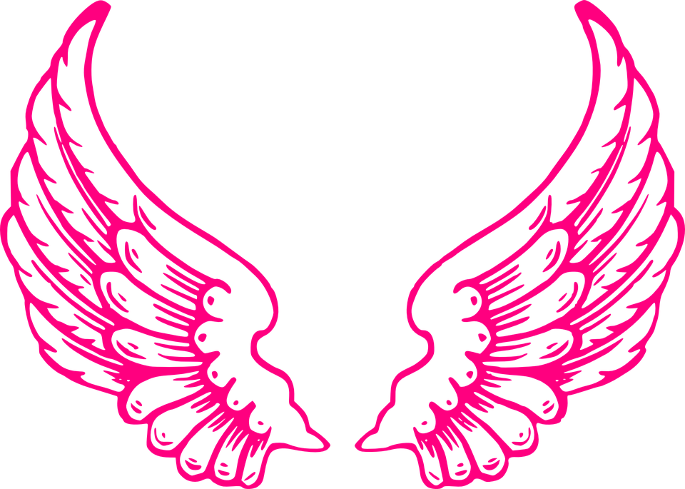 Wings Angel Feathers Of.