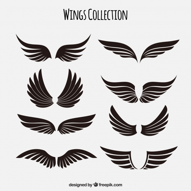Wings Vectors, Photos and PSD files.