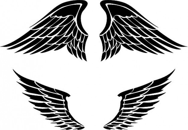 Set of two wings designs Vector.