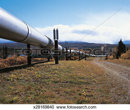 Stock Photography of Trans Alaska Pipeline, Alaska, Usa x28169840.