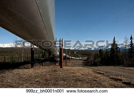 Stock Photography of View of the Trans Alaska Pipeline near Delta.