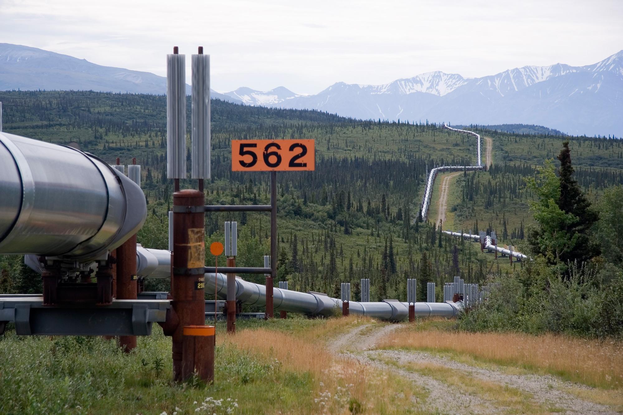 1000+ ideas about Alaska Permanent Fund on Pinterest.
