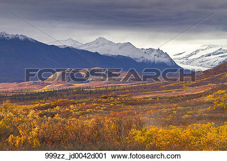 Stock Photography of Autumn scenic of the Maclaren River valley.