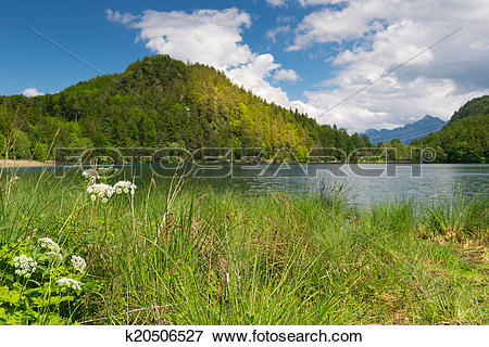 Picture of view over small lake with blue wataer and green flower.