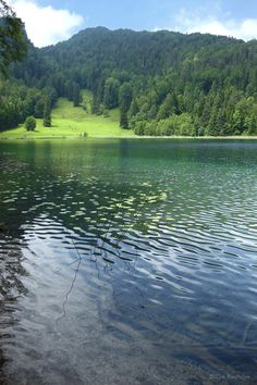 Beautiful, Bavaria germany and Picnics on Pinterest.