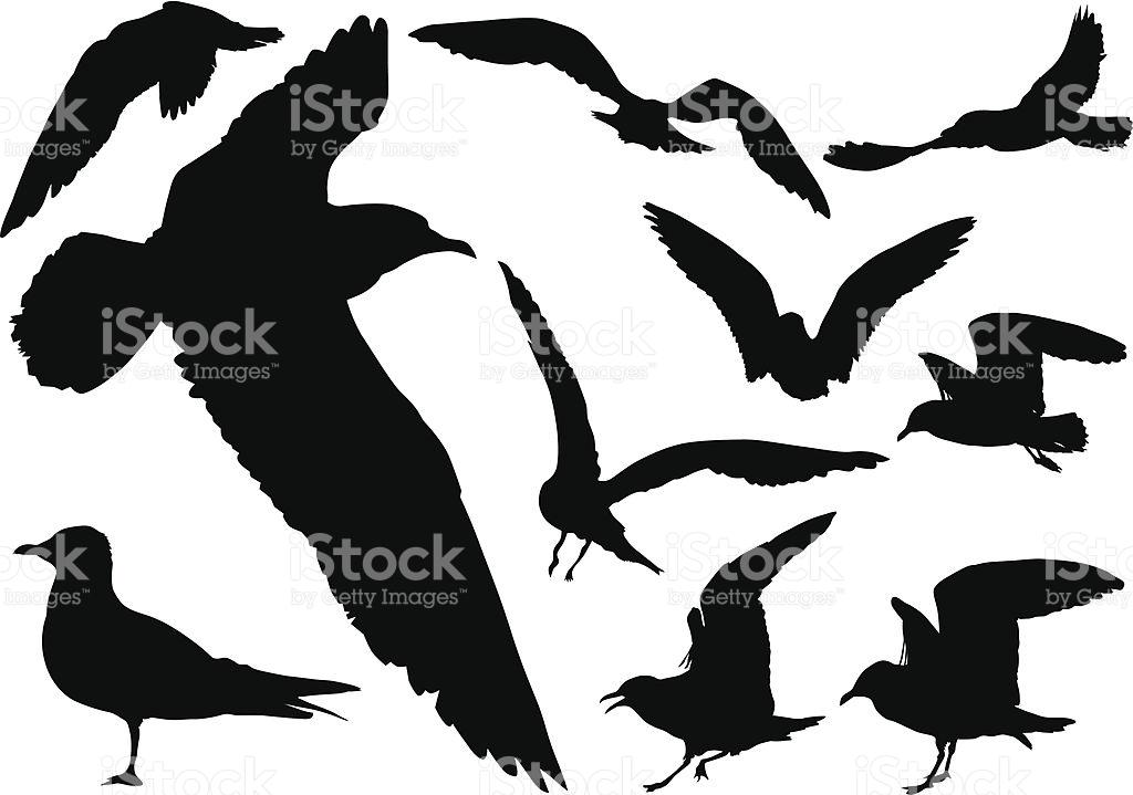 Mockup Silhouettes Of Seagulls In Flight stock vector art.