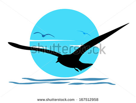 Sea Bird Stock Images, Royalty.