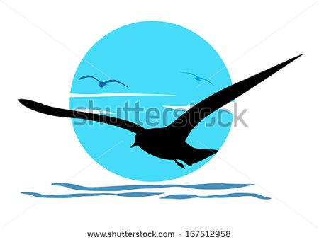 Sea Bird Stock Images, Royalty.