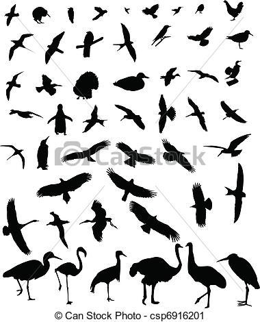Flying albatross Vector Clip Art EPS Images. 105 Flying albatross.