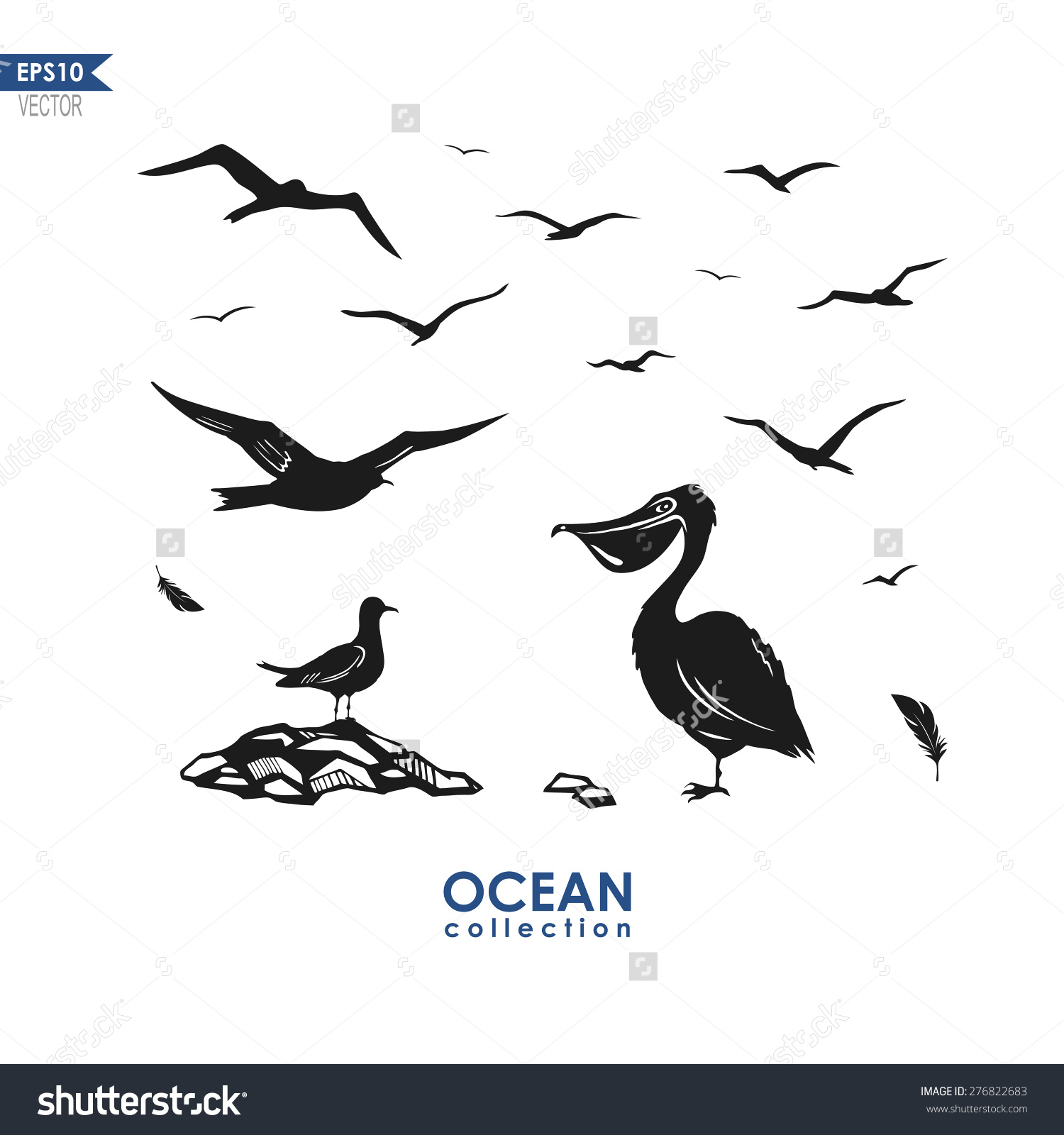 Set Different Sea Birds Seagull Pelican Stock Vector 276822683.