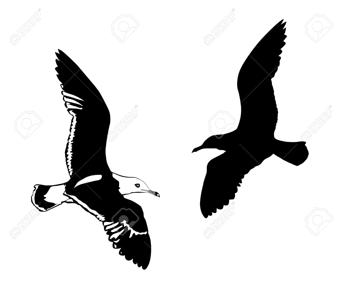 113 Albatross Icon Stock Vector Illustration And Royalty Free.