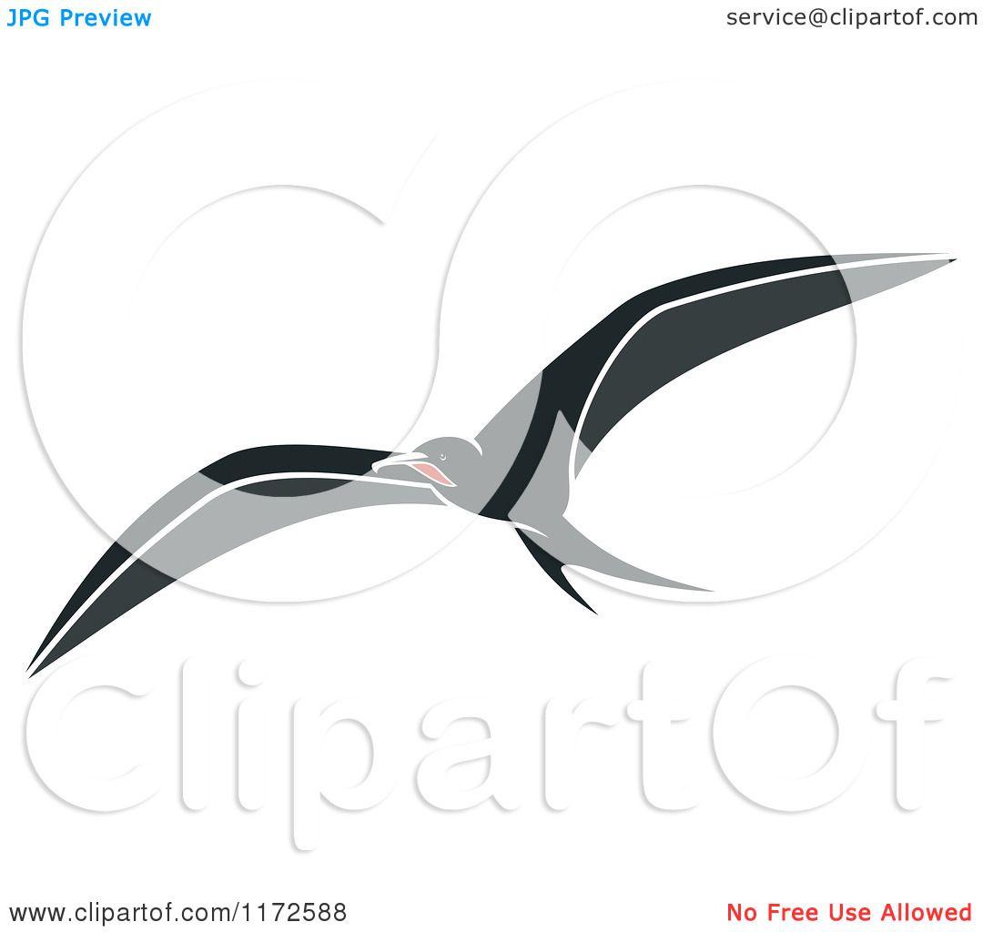 Clipart of a Flying Albatross Bird.