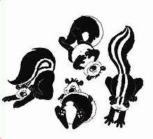 15 Best Skunks images.