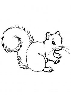 Free Black And White Squirrel Pictures, Download Free Clip.