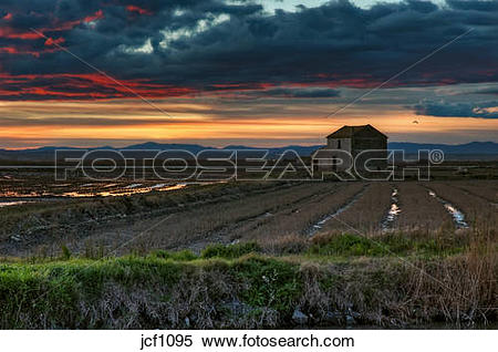 Stock Image of Spain. Valencia. La Albufera Lake. Sunset, lonely.