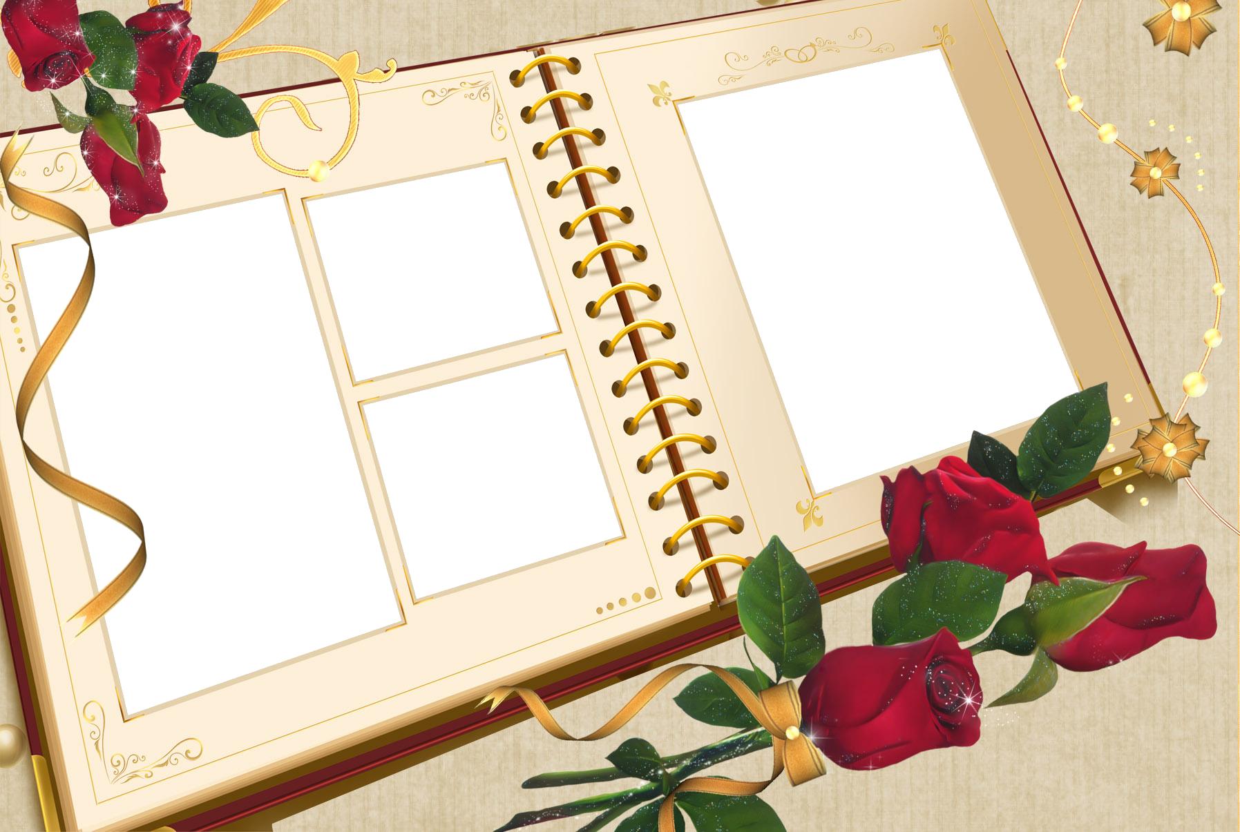 Large Transparent Album Frame with Roses.