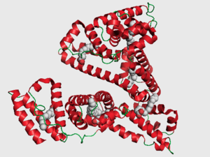 mBiosphere: Albumin enhances antifungal drug activity.