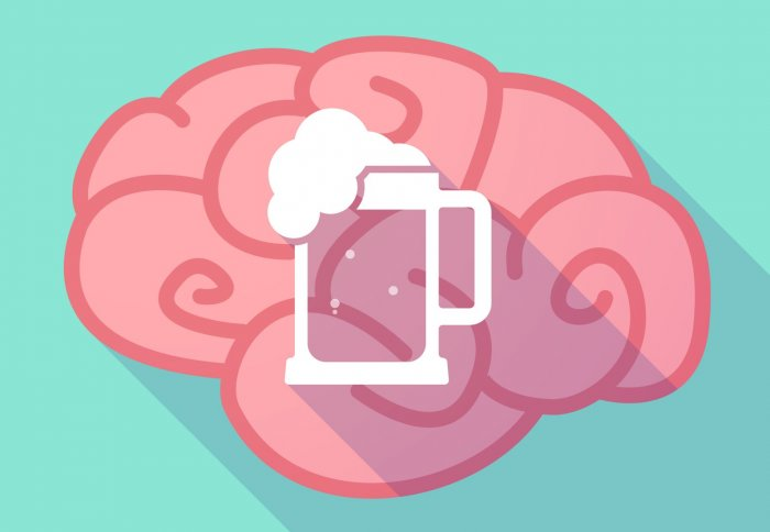 The brains of alcohol dependents and binge drinkers may.