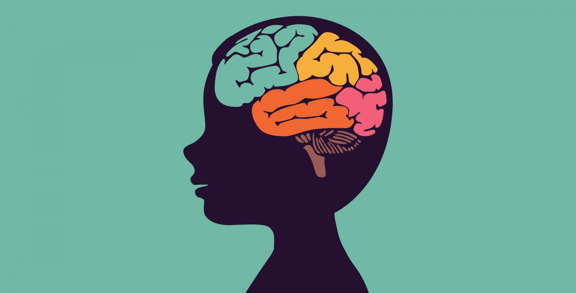 How Alcohol Affects the Brain — Know When. Know How..