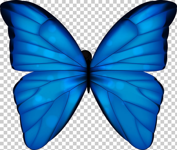 Monarch butterfly Blue Phengaris alcon, blue butterfly PNG.