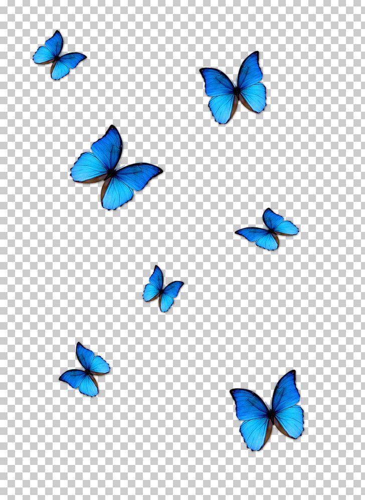 Butterfly Blue Phengaris Alcon PNG, Clipart, Aqua, Azure.