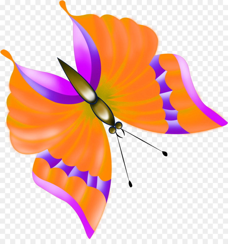 Monarch Butterfly Drawing clipart.