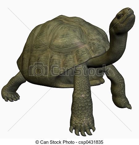Giant tortoises Clip Art and Stock Illustrations. 64 Giant.