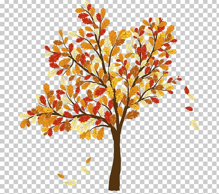 Autumn Leaf Color Tree PNG, Clipart, Autumn, Autumn Leaf.