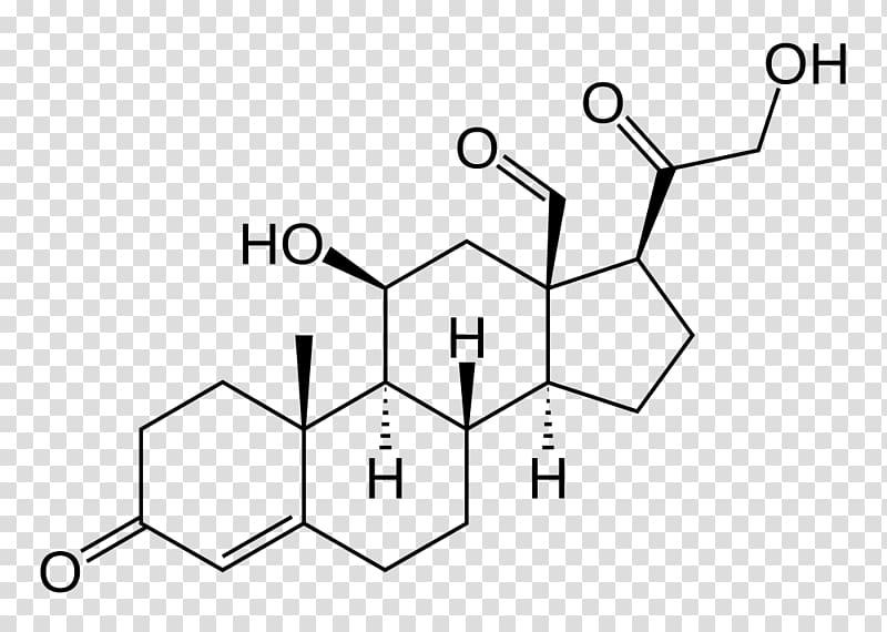 Aldosterone Mineralocorticoid Renin.