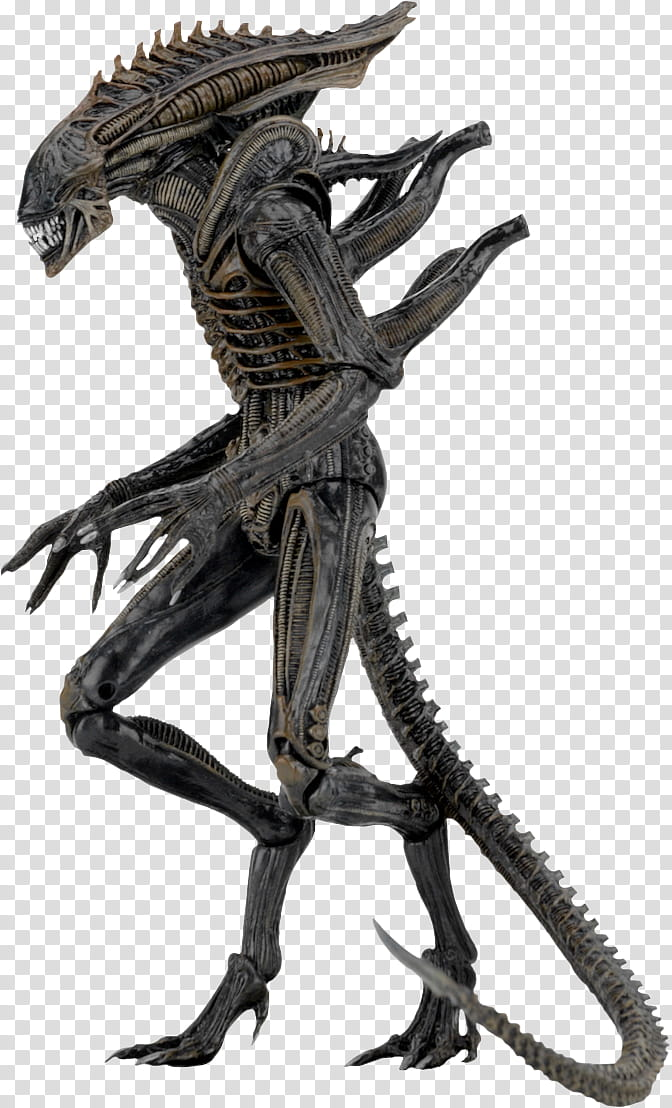 Alien series black xenomorph inch action figu transparent.