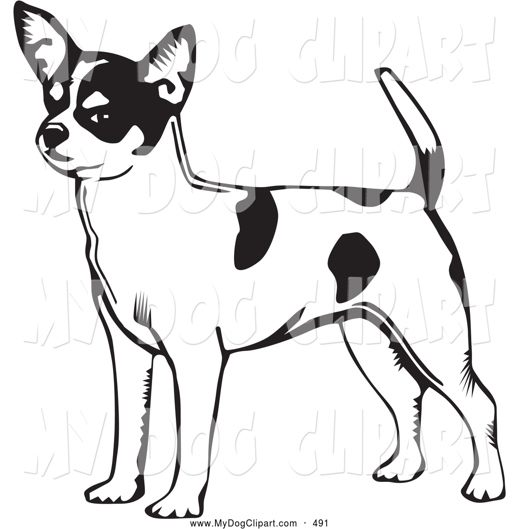 Clip Art of a Smiling Alert Short Haired Chihuahua Dog with.