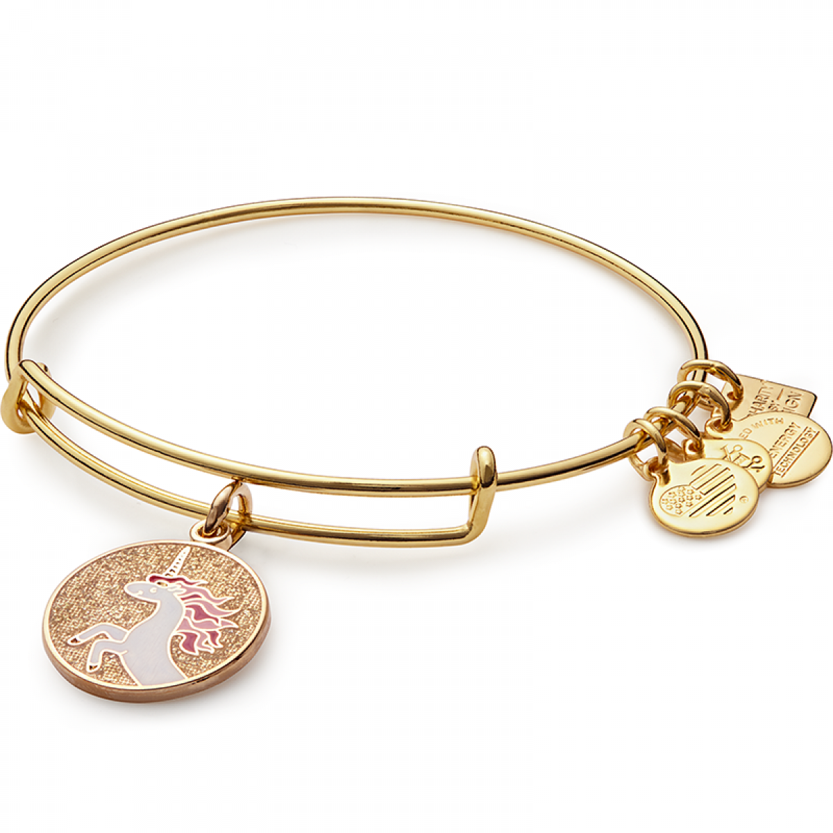 ALEX and ANI Charms Give Back.