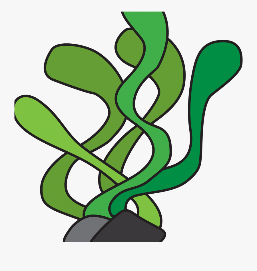 Aquatic Plants Seaweed Underwater Algae Clip Art.