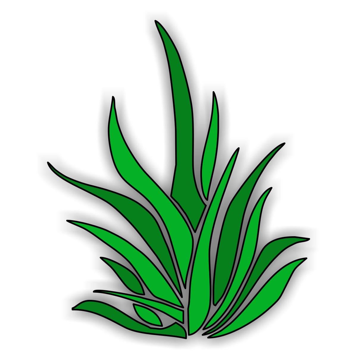 Free Ocean Algae Cliparts, Download Free Clip Art, Free Clip.