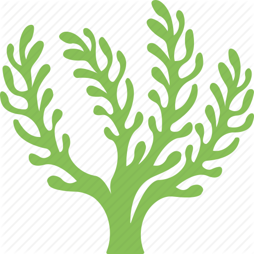 \'Occean and Sea Life 2\' by Creative Stall.