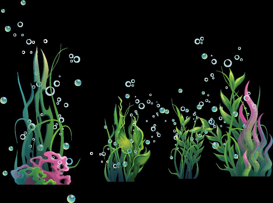 Algae Seaweed Ocean Plantas Algas Marinas Png.