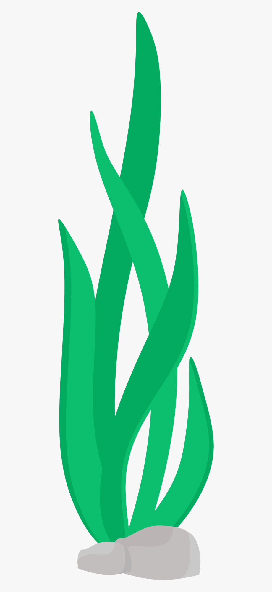Seaweed Clipart Png.