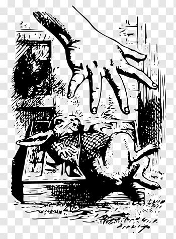Tenniel Illustrations For Carrolls Alice In Wonderland.